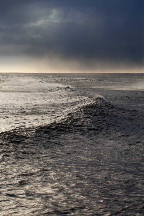 Stormigt baltiskt hav. royaltyfri bild