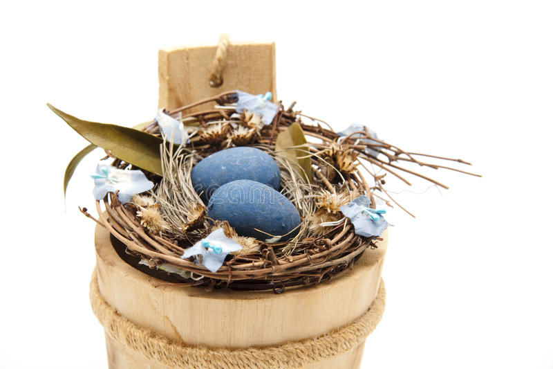 blått äggrede för fågel arkivfoton