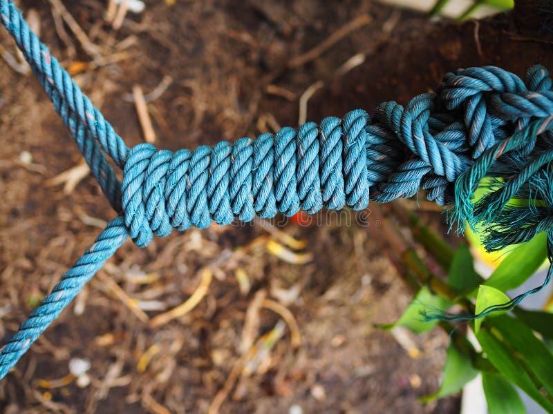 Blått band för fnuren för spiral för manila rep länge arkivbild