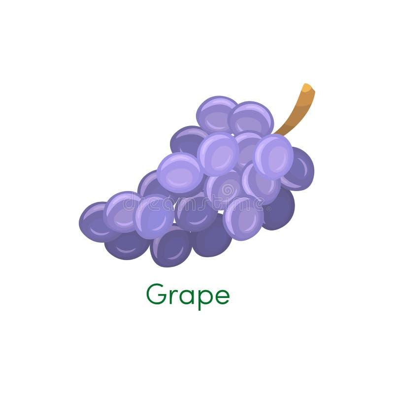 Blått blöter isabella, vin somdruvor samlar ihop isolerat på vit bakgrund Designbeståndsdel för app-lek eller UI-website Druvor royaltyfri illustrationer
