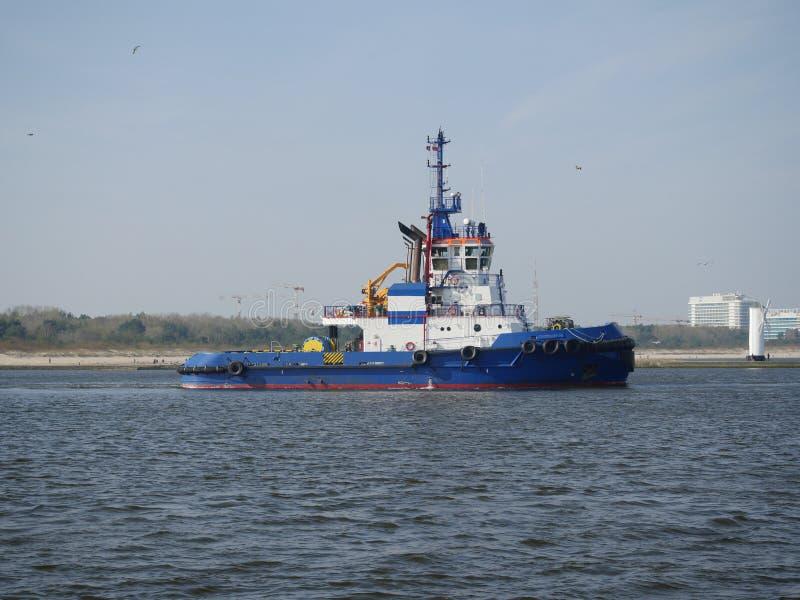Blått bogserbåtskepp royaltyfria bilder
