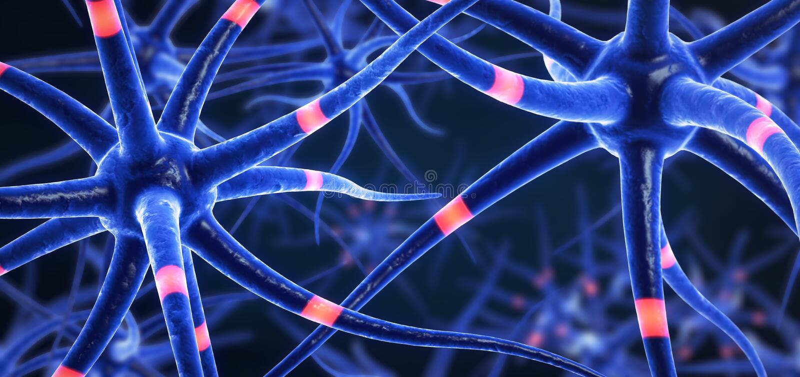Blått färgade överförande hjärnceller vektor illustrationer
