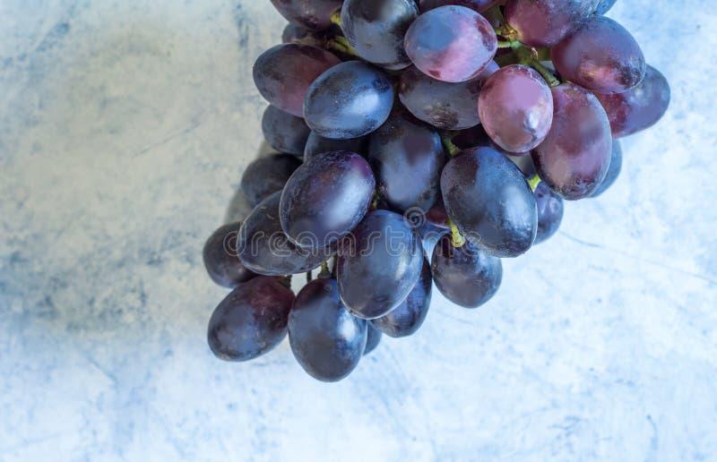 Blått foto för bästa sikt för druvor arkivfoton