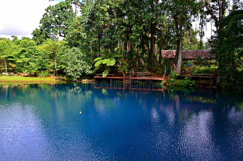Blått hål i Espiritu Santo Island, Vanuatu arkivfoton