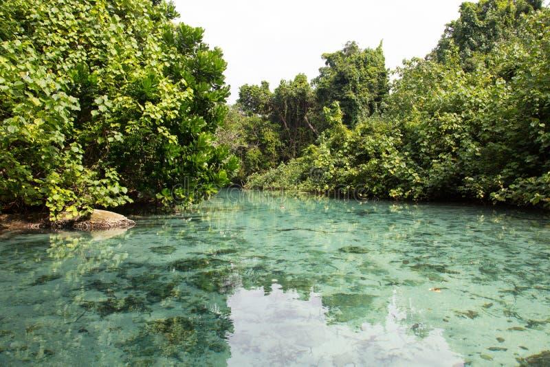 Blått hål, Vanuatu royaltyfria bilder