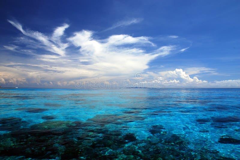 Blått hav med korallreven från tachaiön in arkivbilder