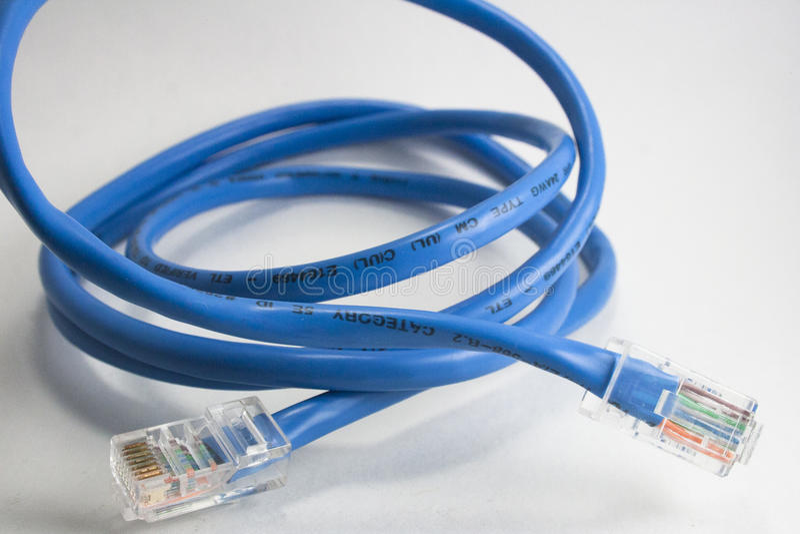 blått kabelEthernet royaltyfri bild