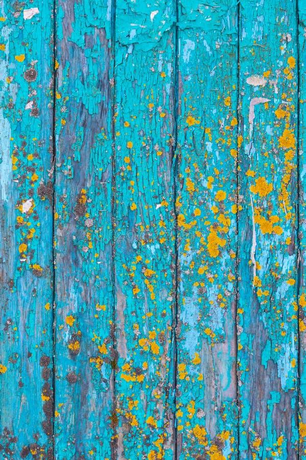 Blått målad wood bakgrundstextur royaltyfria foton