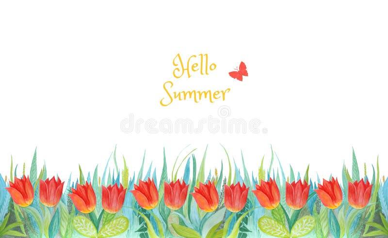 Blått och grönt gräs med ljusa tulpan isolerad bakgrund planterar white Hello sommar arkivbild