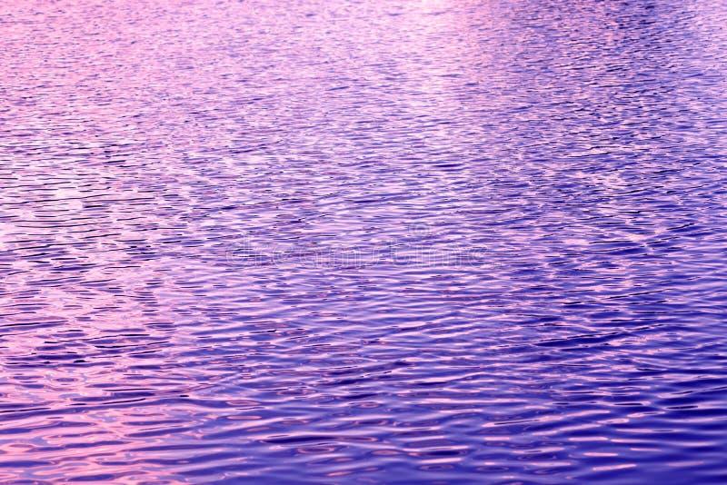 Blått och lilor för krusning för sjövattenyttersida arkivbilder