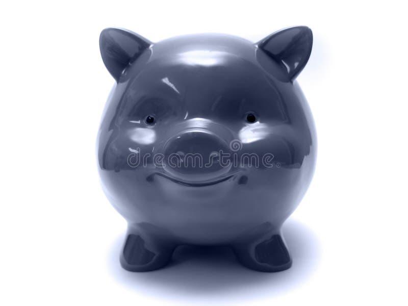 blått piggy royaltyfri foto