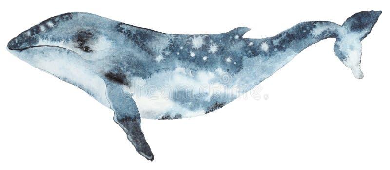 Blått val för vattenfärg stock illustrationer