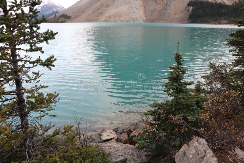 Blått vatten för glaciär royaltyfria bilder