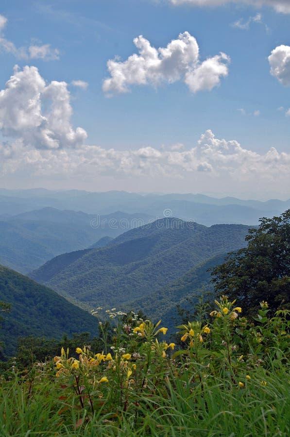 BlåttRidge gångallé, North Carolina arkivfoto