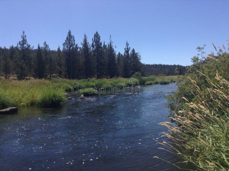Blåttsky och flod arkivfoto