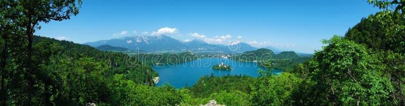 Blödd panoramautsikt av sjön, Slovenien panorama arkivbild