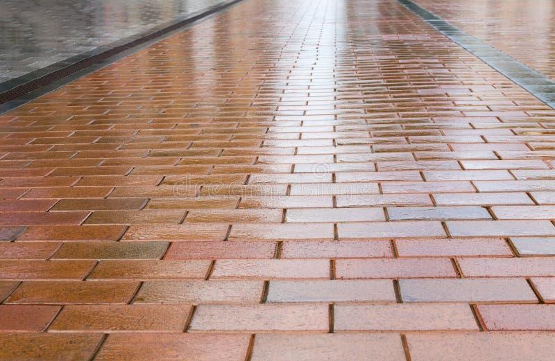 Blöta brun trottoar arkivfoton