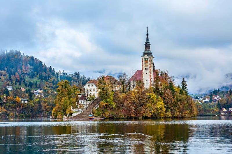 Blött Slovenien sikt med kyrkan royaltyfri foto
