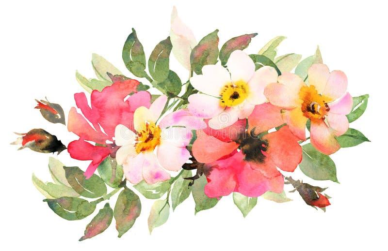Blühen Sie böhmischen Blumenstrauß mit den rosa und roten Rosen Aquarellkranke lizenzfreie abbildung