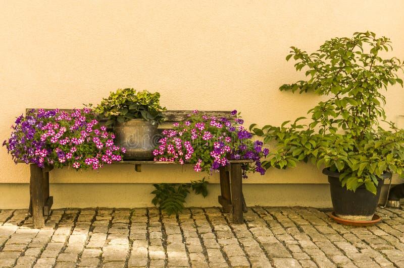 Blühen Sie Bank mit Blumentopf und bunten Blumen vor bri stockfotos