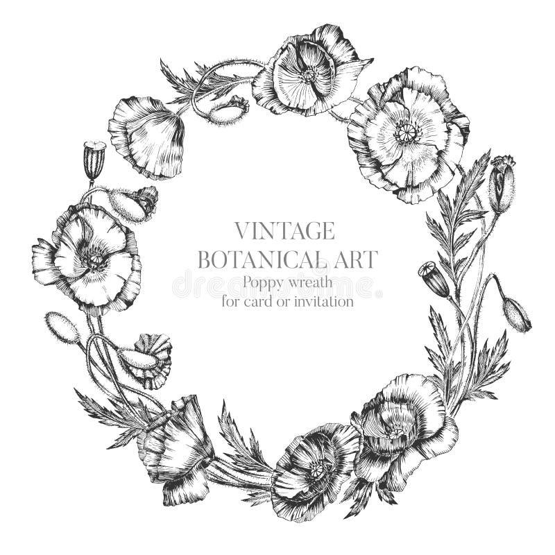 Blühen Sie Kranz von Mohnblumenblumen, -knospen und -blättern Botanische Hand gezeichnete realistische Illustration mit Tusche Fü vektor abbildung