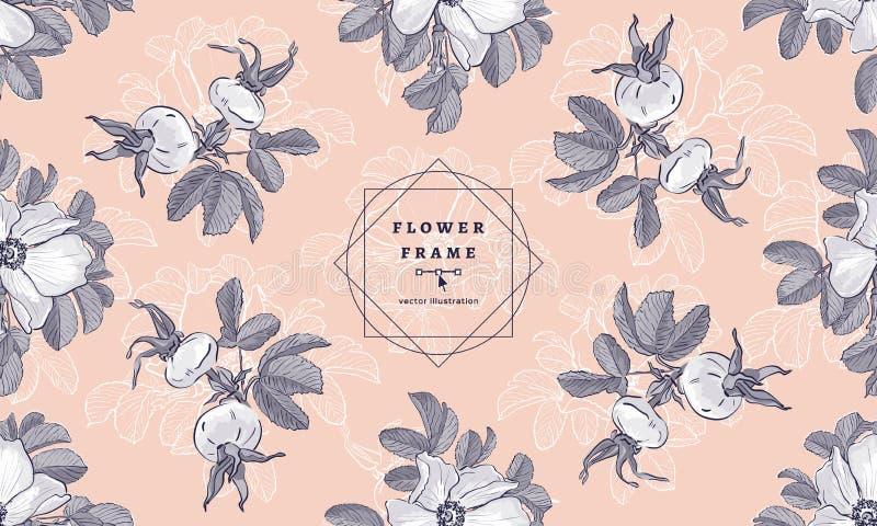 Blühen Sie Rahmen wilde Rosen und Hagebutten, Blumenmodemuster Hand gezeichnete boho botanische Zeichnungen VektorMarkendesign vektor abbildung