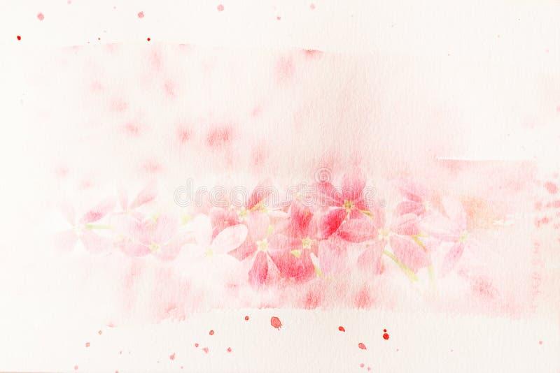 Blühen Sie (Rangun-Kriechpflanzen) Aquarellillustration lizenzfreie abbildung