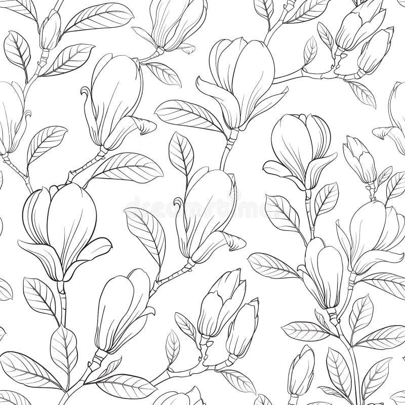 Blühende Blume der Magnolie lizenzfreie abbildung