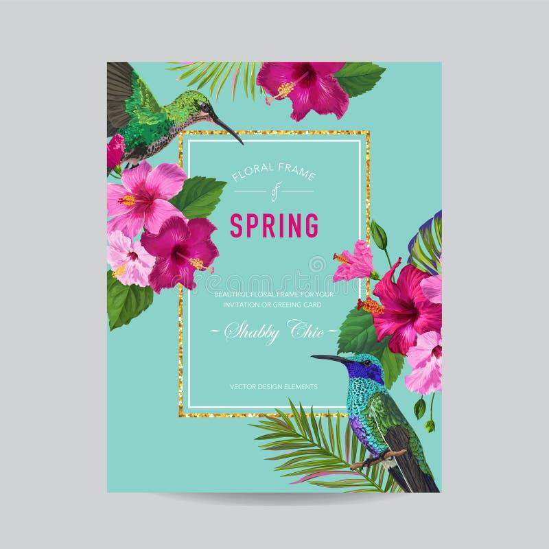 Blühender Frühlings-und Sommer-Blumenrahmen mit tropischen Kolibris Aquarell-Hibiscus-Blumen für Einladung, heiratend stock abbildung