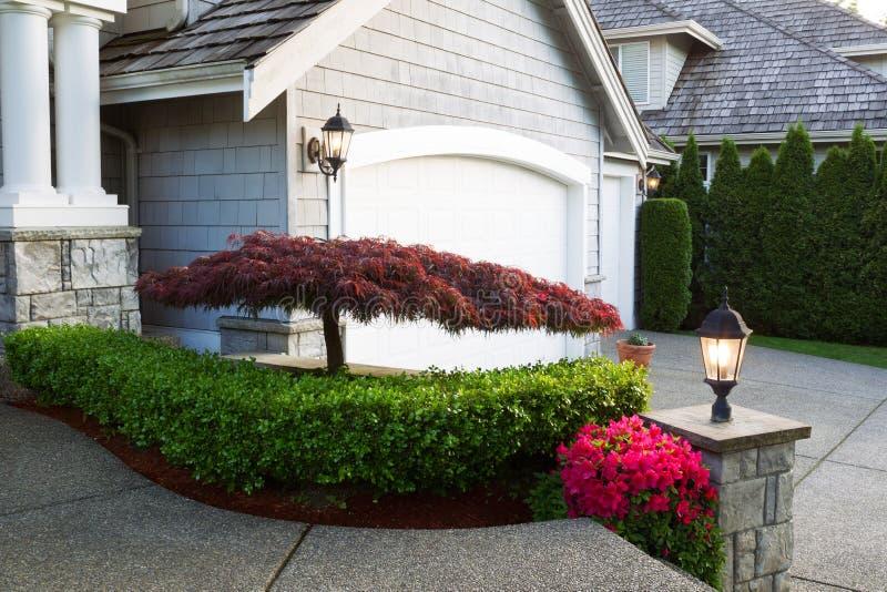 Blühender japanischer Ahornbaum vor Haus stockbild