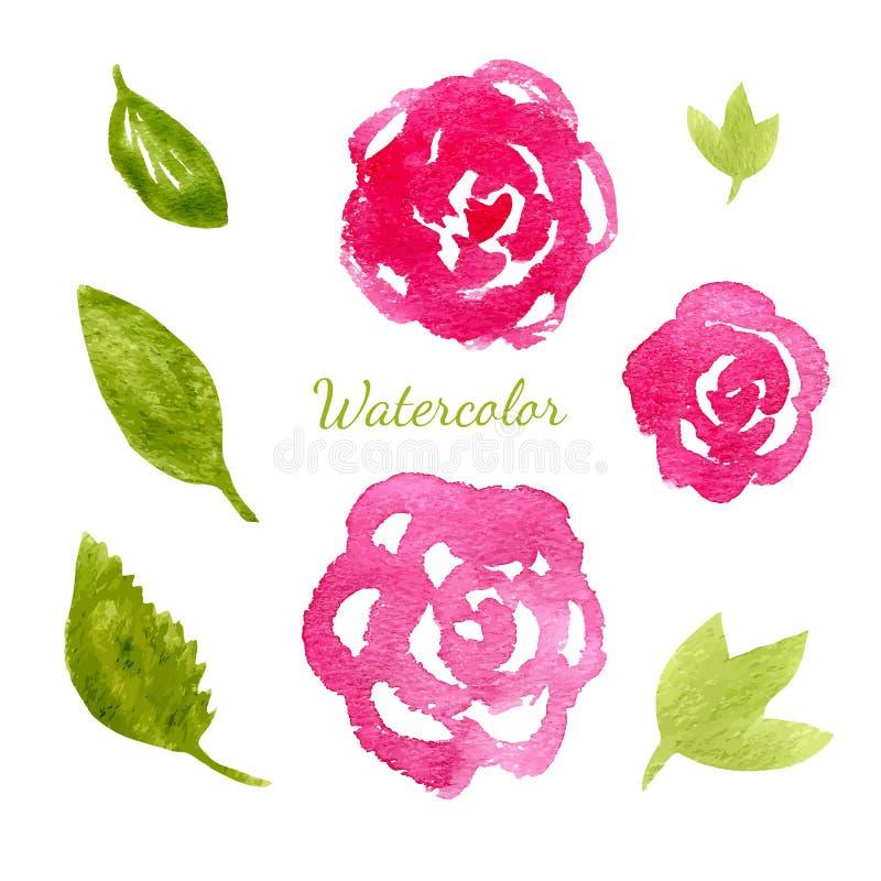 Blüht Aquarellsammlung Blumen- und Blattelementsatz Gezeichnete Illustration des Vektors Hand für Einladung vektor abbildung