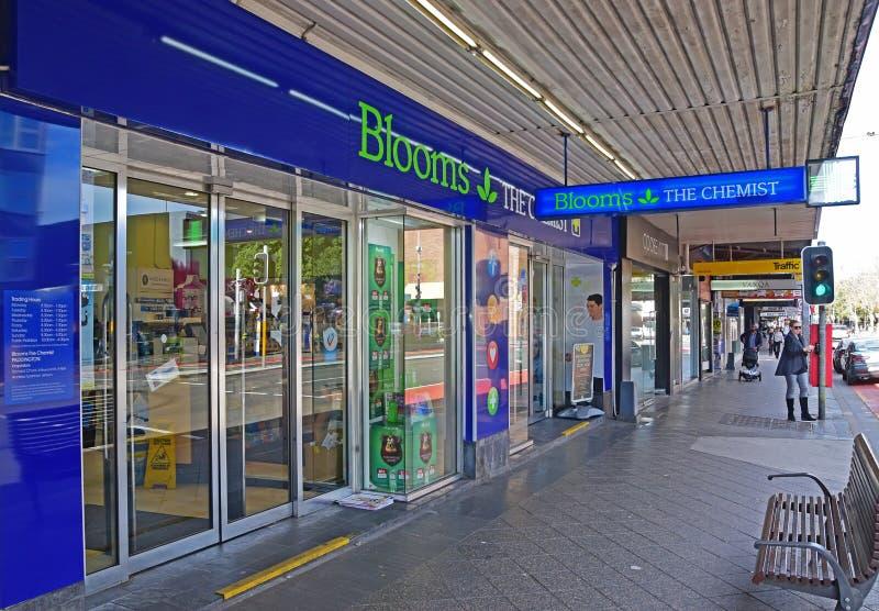 Blüht die Apotheke bei Paddington, Oxford-Straße, Sydney, Australien stockfotografie