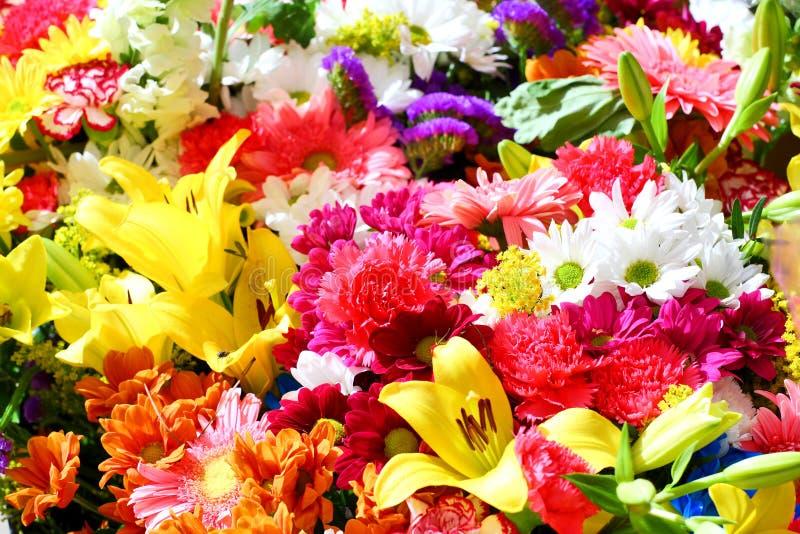 Blüht Hintergrund stockfoto