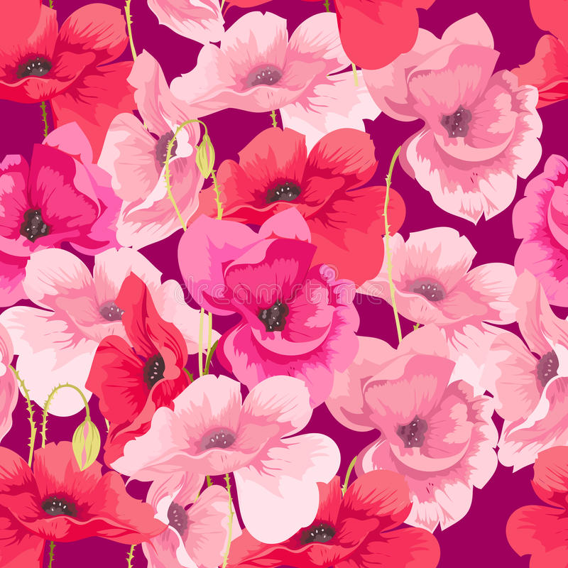 Blüht Mohnblumen lizenzfreie abbildung