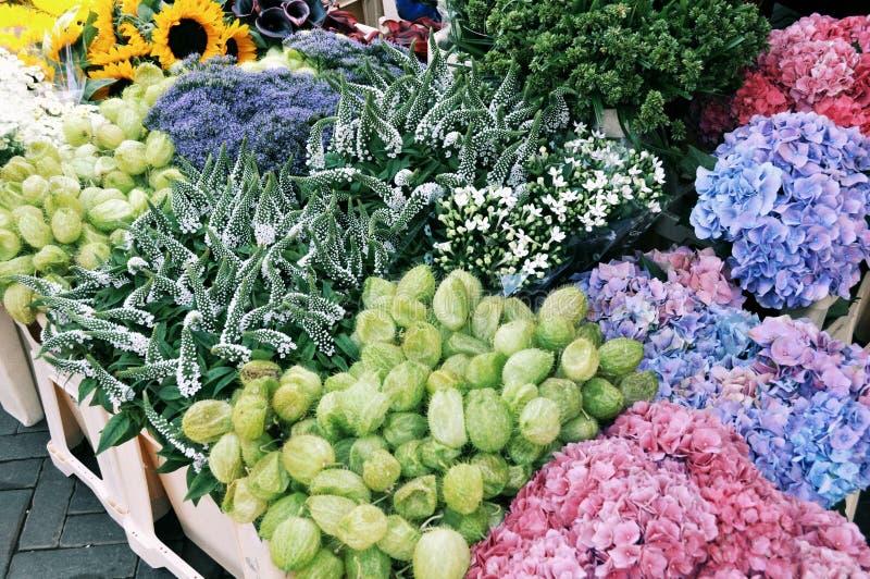 Blüht Verkauf stockbilder