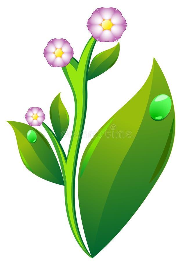 Blüte und Blatt der Kartoffel vektor abbildung