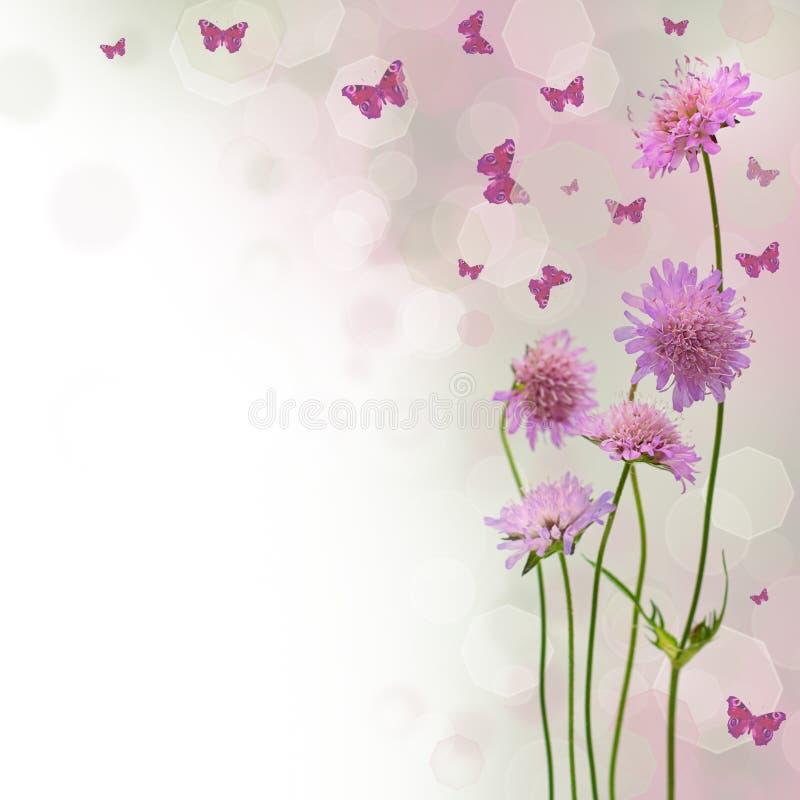 Blütenhintergrund - Blumenrand stockfoto