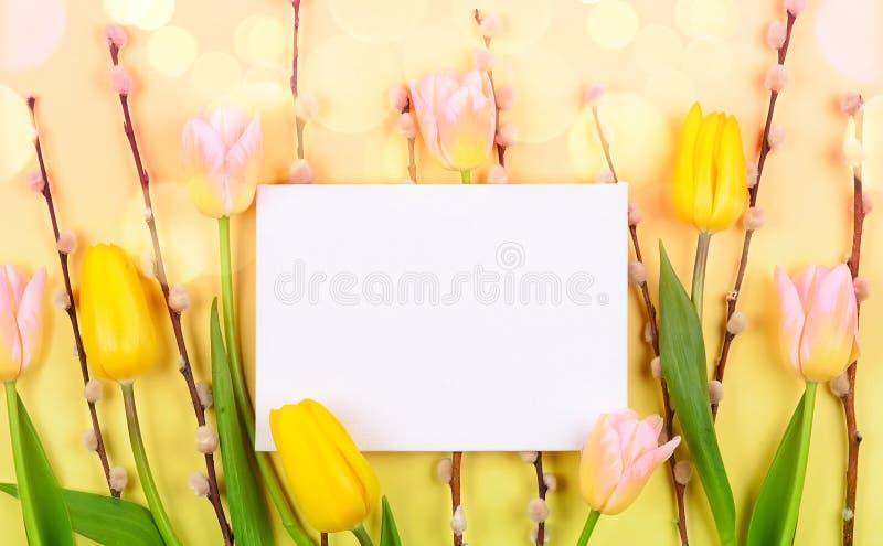 Blütenzusammensetzung mit Tulpen und Zweig der Muschelweide auf gelbem Hintergrund lizenzfreies stockbild