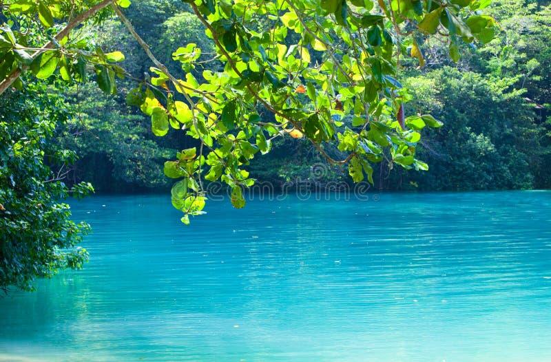 blå jamaica lagun arkivfoton