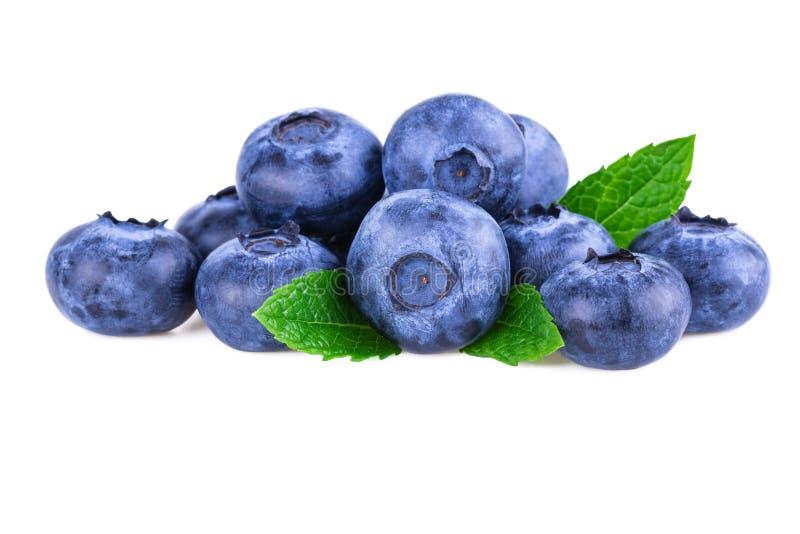 Bl?b?r Bunt av det nya blåbäret med mintkaramellsidor som isoleras på vit arkivbilder
