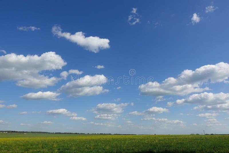 Bl? himmel och h?rligt moln Vanlig landskapbakgrund f?r sommaraffisch Den bästa sikten för ferie arkivbild