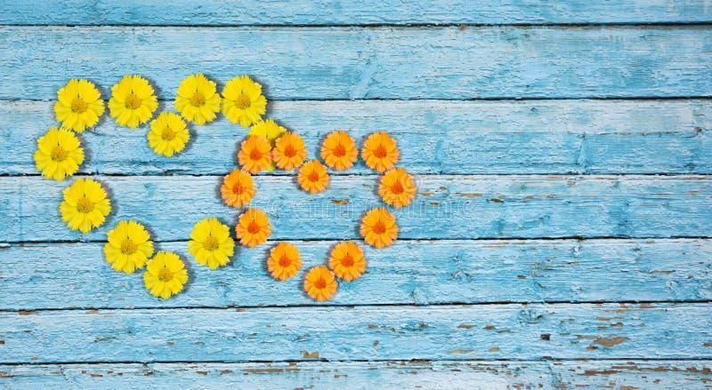 Bl?ht Collage zwei Herzen von Blumen auf einem hölzernen Hintergrund stockfoto