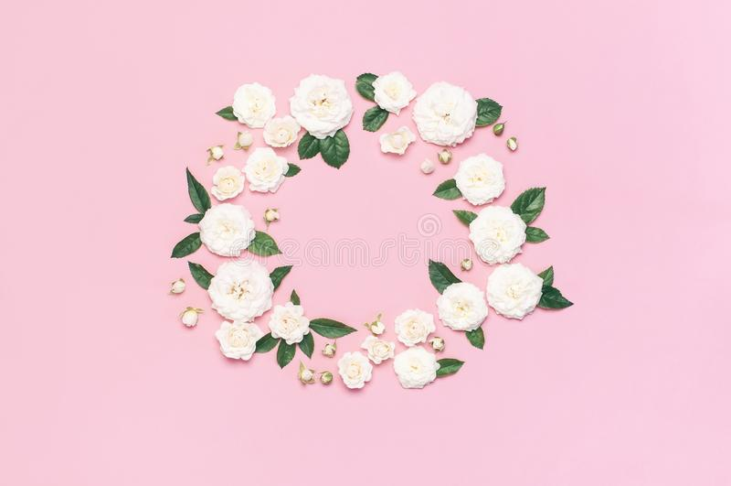 Bl?ht Zusammensetzung Feld in Form von Kreis von weißen frischen Rosen und von grünen Blättern auf leichtem rosa Hintergrund Flac stockfotografie
