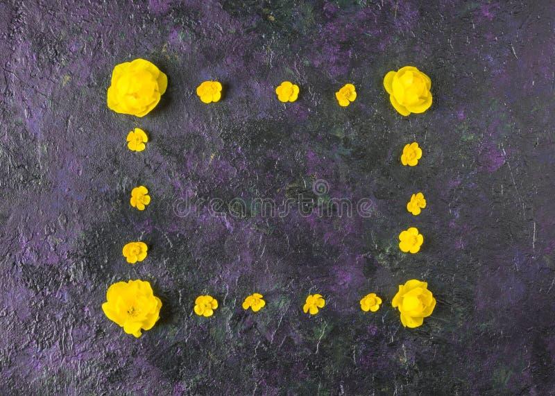 Bl?ht Zusammensetzung Feld gemacht von den verschiedenen gelben Blumen auf purpure Hintergrund Ostern, Fr?hling, Sommerkonzept Fl stockfotos