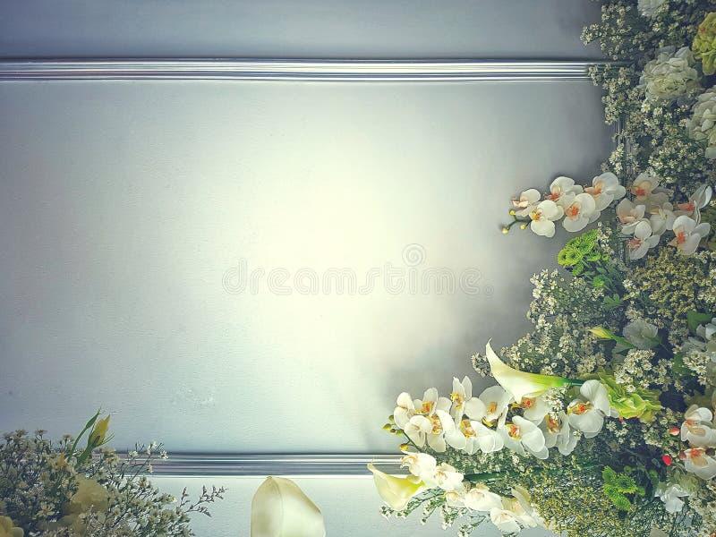 Bl?ht Zusammensetzung Feld gemacht von den weißen Blumen und von den grünen Blättern Draufsicht in der Ebenenlage lizenzfreies stockbild
