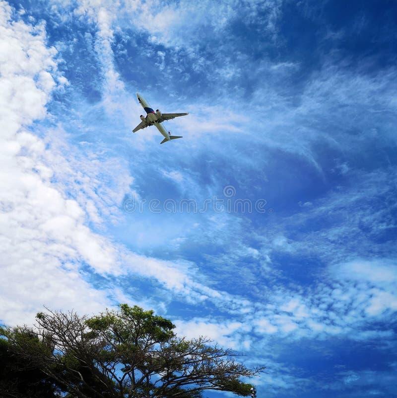 bl? sky f?r flygplan arkivbild