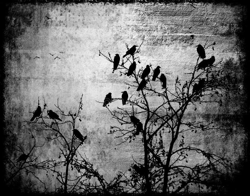 Blach abstrait d'oiseaux de corbeaux de photo de cercle et bois gothique blanc d'effet illustration stock