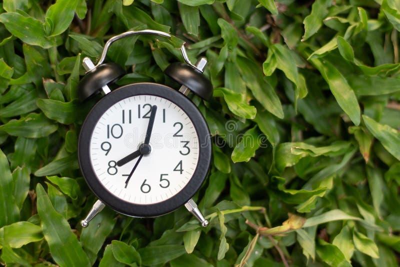 Black alarm clock on green grass background stock photos