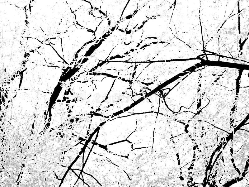 Black&white Hintergrund stockbild