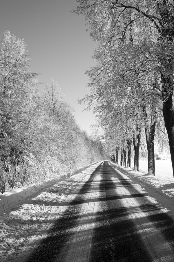 Free Black And White Winter Way Stock Images - 448054